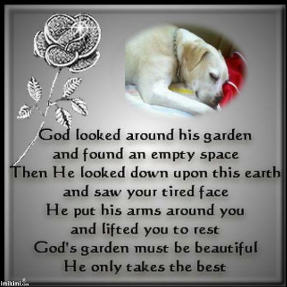 Rest in Peace Dog Poem Janey Michelle Poe hasn't earned