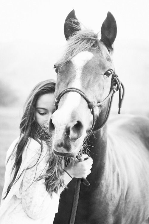 Senior pic with horse...the only problem is I don't have a horse :/