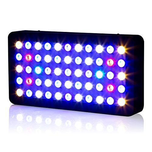 Top 10 Best Led Reef Lights Reviews Buyer S Guide 2019 Led Aquarium Lighting Aquarium Lighting Saltwater Fish Tanks