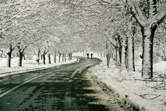Ifrane, Morocco, in  winter