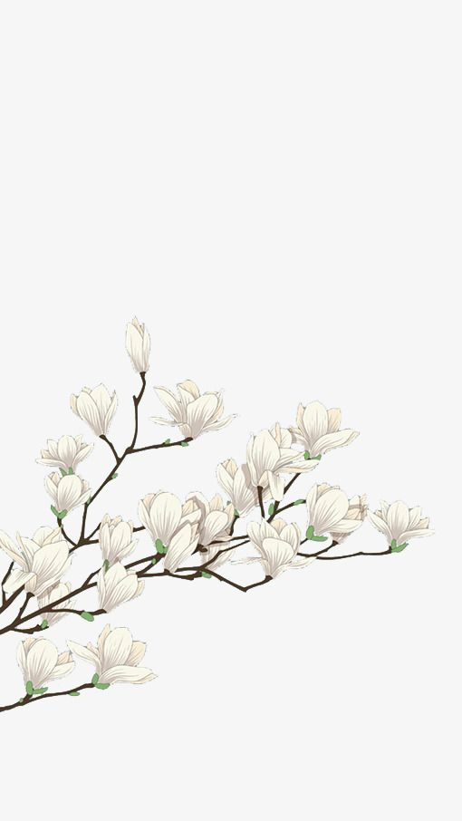 Millions Of Png Images Backgrounds And Vectors For Free Download Pngtree Flower Art Flower Backgrounds Watercolor Flowers