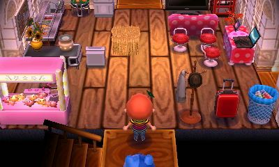 My main room. Kitchen on the left, living room on the right. All you can see is orderable at T&T catalog.