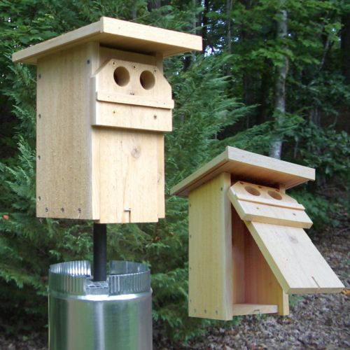 Bluebird 2 Hole Mansion Designed By Linda Violett