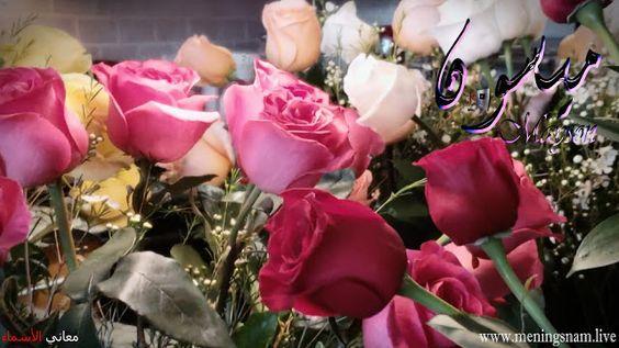 معنى اسم ميسون وصفات حاملة هذا الاسم Maysson Plants Rose Flowers