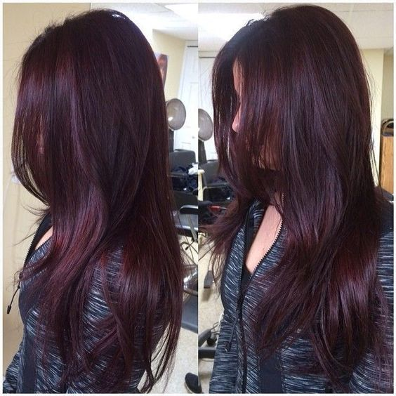 The Best Color For Girls With Black Hair Blackberry Shades The Haircut Web Hair Color Mahogany Hair Styles Hair Color Plum