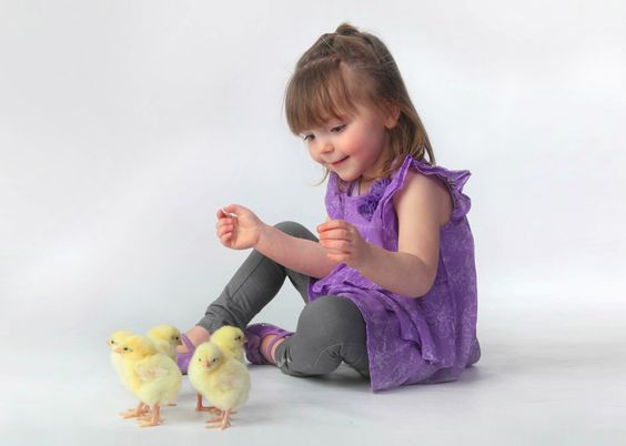 Come On Over #Chicken! Kids Love #Chickens