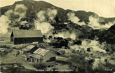 Whakarewarewa Rotorua New Zealand 1920s Geothermal Area Antique Vintage Postcard