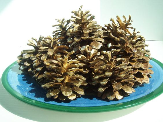 Pine Cones/20/ Spray/ Painted/ GOLD/ Glittered/ Cottage/ by 2lewa, $17.99