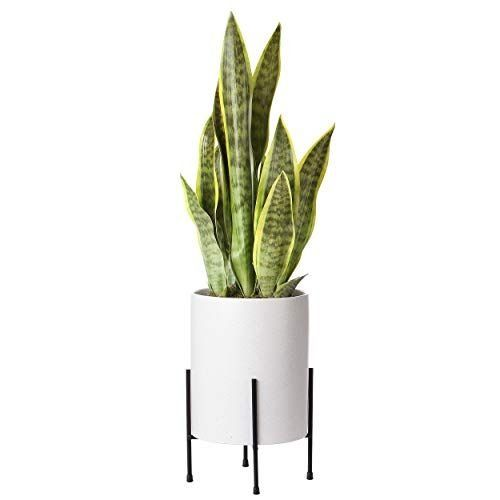 Mid Century Planter With Stand Included 8 Inch Ceramic Plant Pot With Stand Perfect As An Indoo In 2020 Large Ceramic Planters Mid Century Planter Ceramic Plant Pots