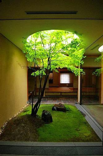 Yukarıda açılmış olan deliğe takılıp kalma, senin ağacın deliksiz de büyür emin ol.