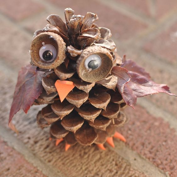 Pine Cone Owl: These adorable pine cone owls are a fun autumn craft for kids of any age.   You can combine this craft with a nature hike to find the pine cones, acorn cups and leaves used in the activity.: