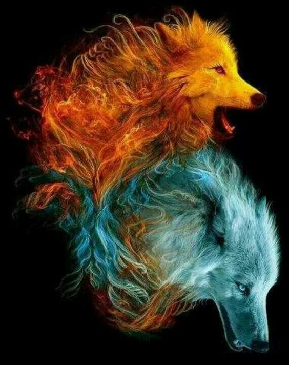 Here the different colours of the wolves represent the contrasting characters of hamlet and Horatio. Hamlet is bawdy, a leader and quick to react, whereas Horatio is a follower, thinker and quiet. the wolves also show pack mentality, which relates to the way that Hamlet and Horatio always have a plan together and are mostly together.