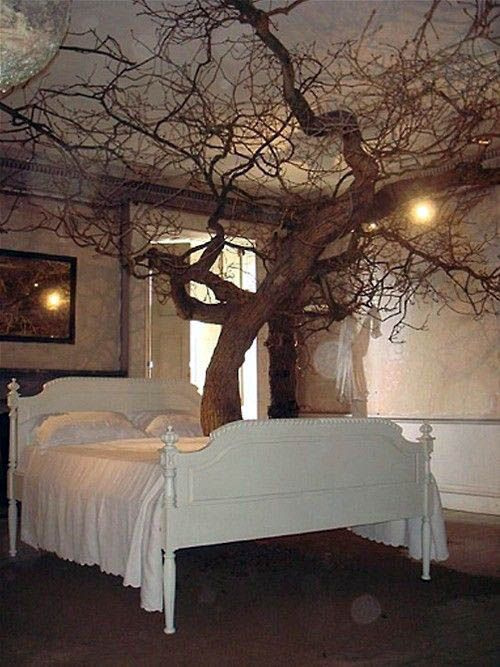 Excellent Bed Canopy Rods On This Favorite Site Fairytale Bedroom Fairy Bedroom Tree Bedroom