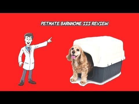 Dog Houses For Sale Petmate Barnhome Iii Dog House Review Dog House For Sale Dog Books Pet Mat