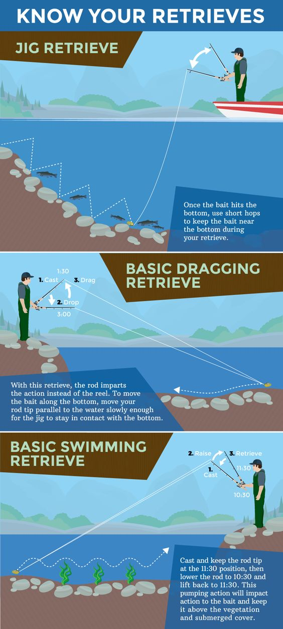 Jig fishing for bass learn how to fish the water column for When is the best time to fish for bass