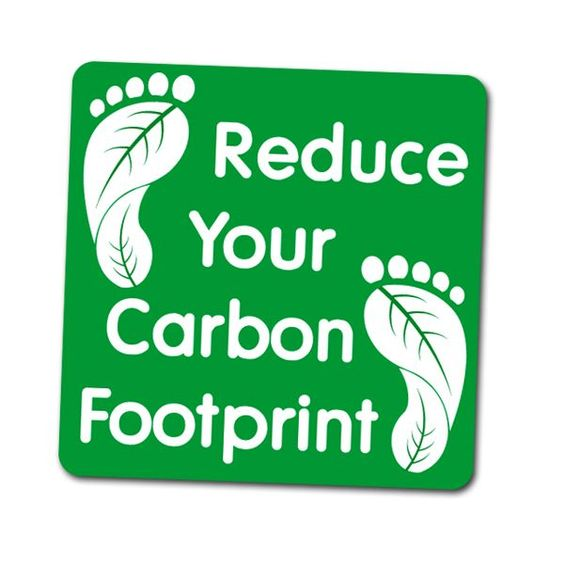 Go Green: Easy ways to cut your carbon footprint