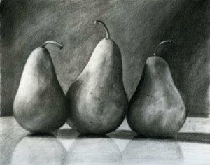 The application of tonal value, highlights, reflection and shadow casting produced a highly realistic depiction of pears using charcoal.