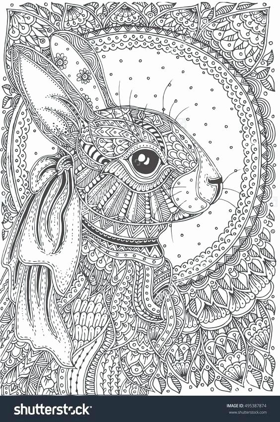 Hard Animal Coloring Pages Adults Bunny Coloring Pages Pattern
