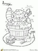 animaux rigolos raton laveur propre