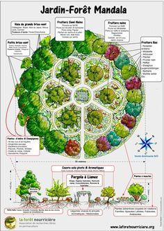 Carte Des Jardins Forets Jardin Foret Jardin Forestier Plan Jardin