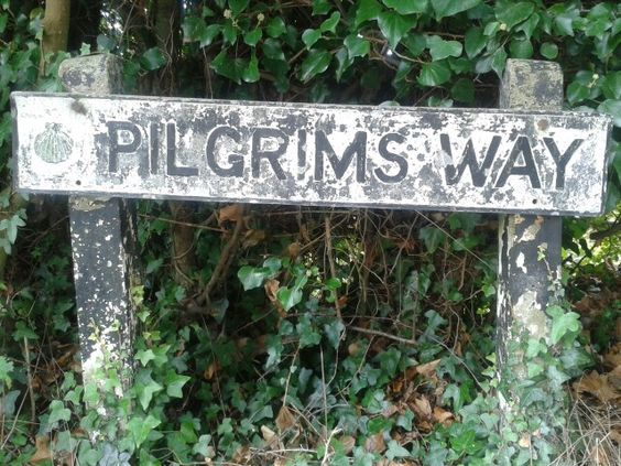 Pilgrims way sign with scallop shell