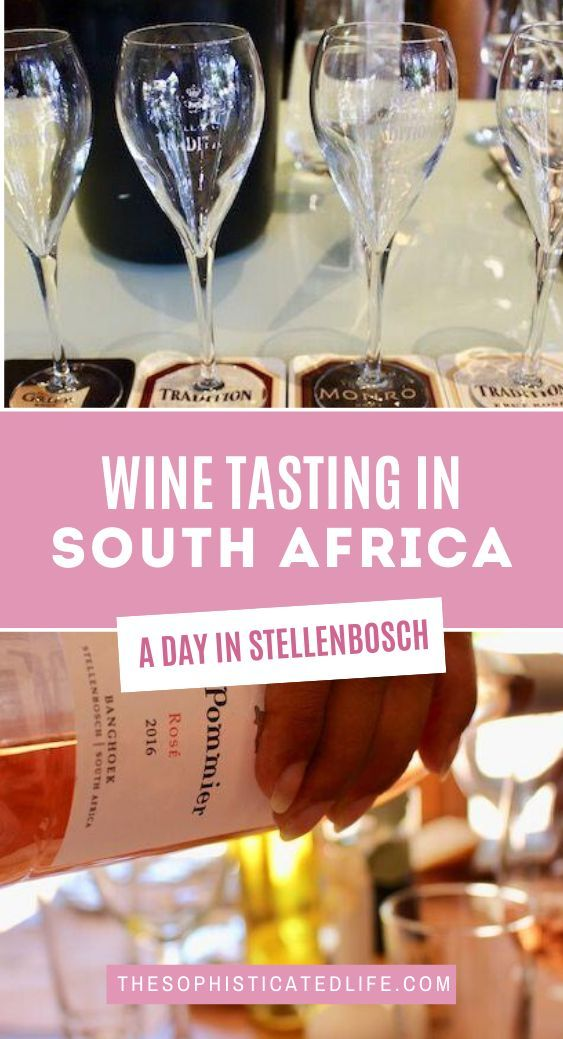 Wine Tasting In South Africa A Day In Stellenbosch In 2020 Wine Tasting Wine South Africa
