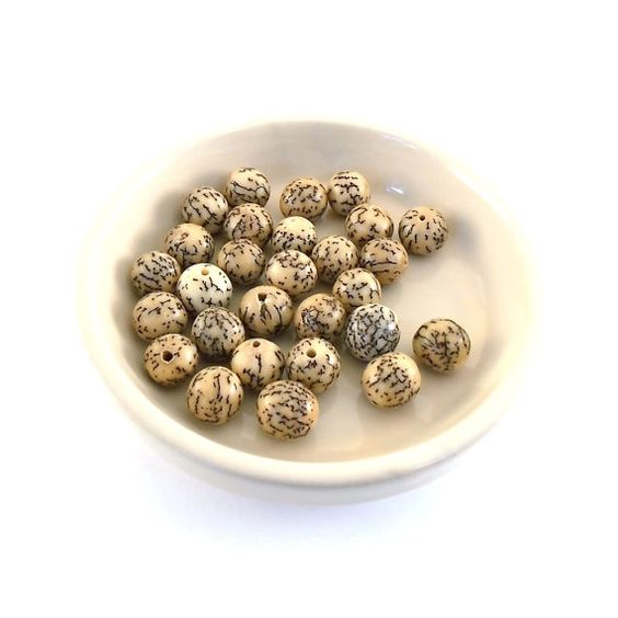 Small Brown and Tan Beetlenut Seed Beads Destash by DestashShack, $1.00