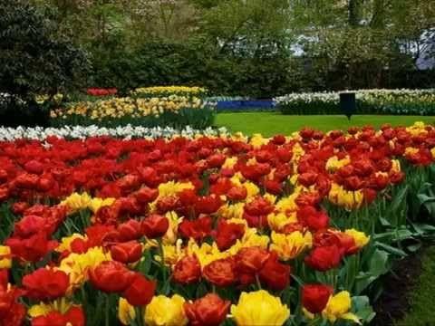 Johann Strauss II - Voices of Spring - Keukenhof Gardens