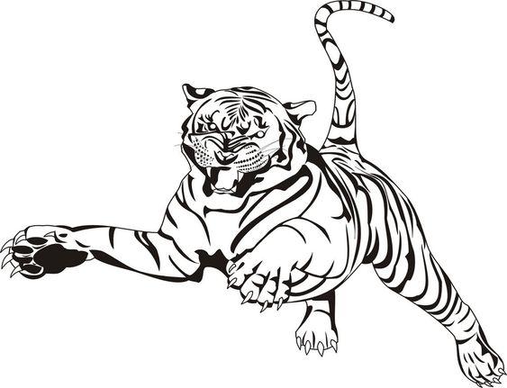 tiger ausmalbilder 08