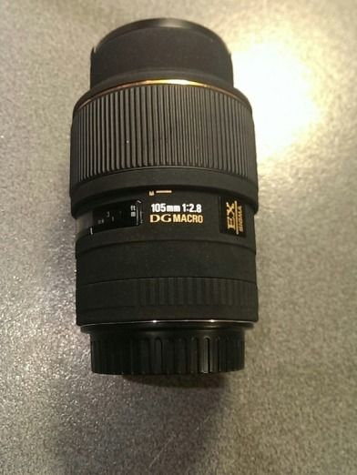Sigma 105mm f2.8 DG EX Macro - Great macro lens with true 1:1 magnification. I've barely used this...