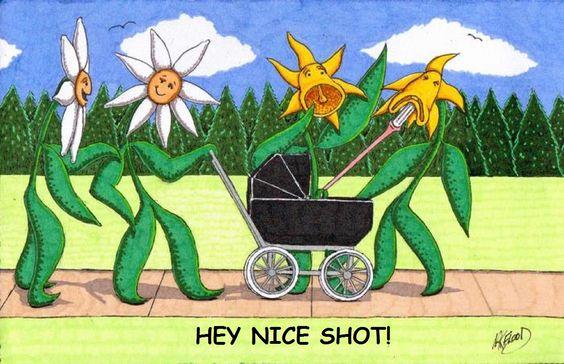 hey nice shot!