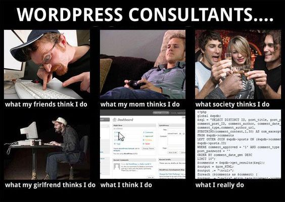 Life of a WordPress Consultant