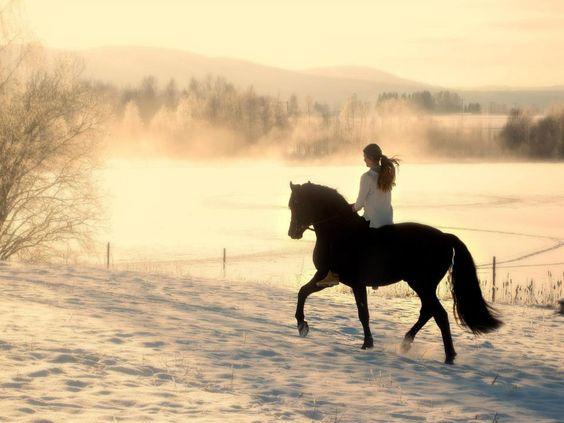 Horseback riding in the snow