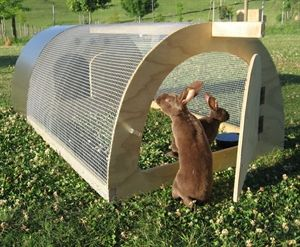 Picture of RabbitTUBE run for exercise and grazing.