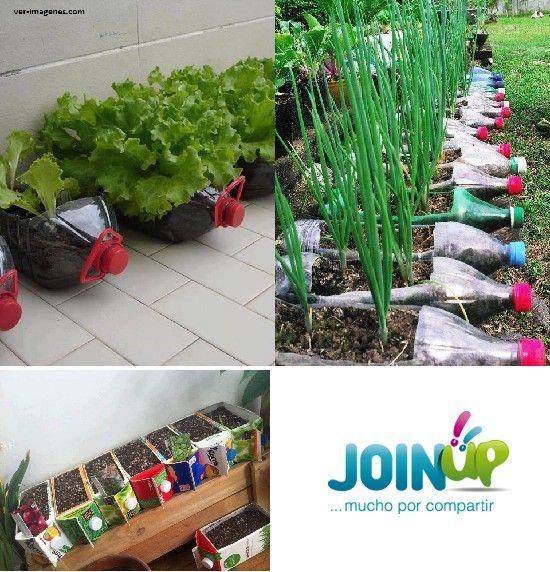 Los envases de plastico y tetrapack son los que mas for 5 cultivos faciles para empezar un huerto en casa