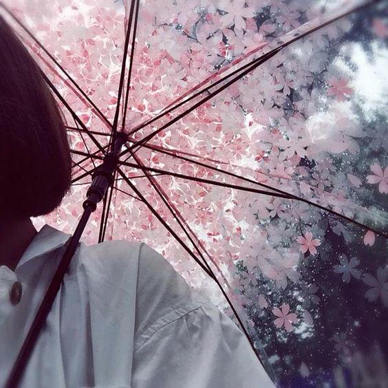 花びらのついた傘
