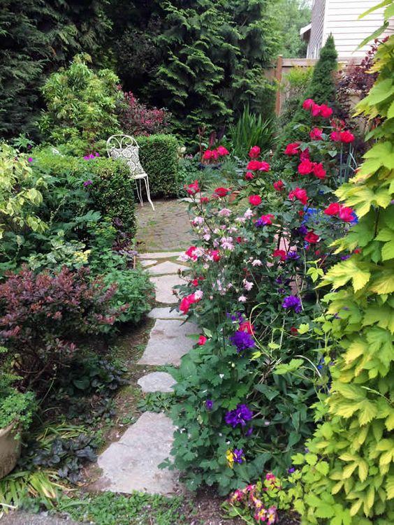 Tiny Lot Big Dreams Fine Gardening Magazine Garden Photo of