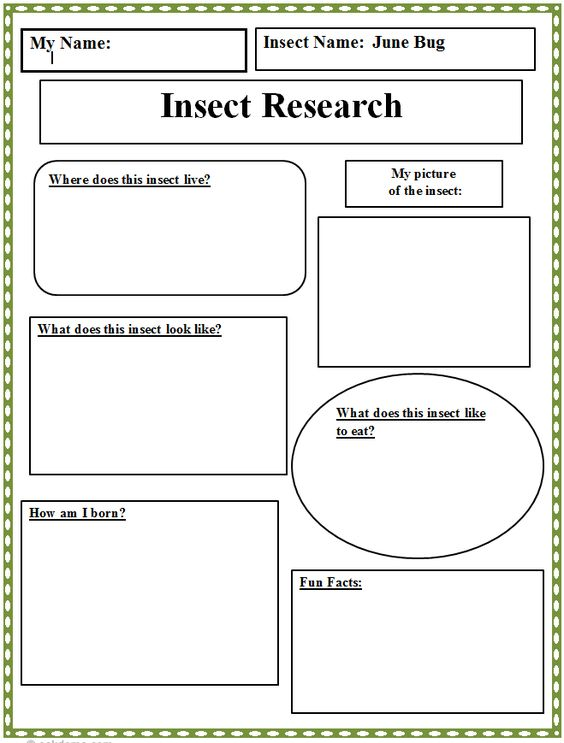 Purchase research paper graphic organizer elementary