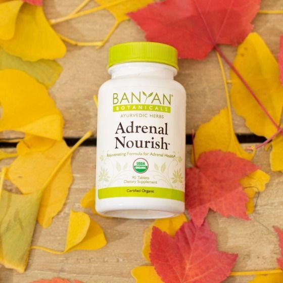An Ayurvedic Guide To Adrenal Health Banyan Botanicals
