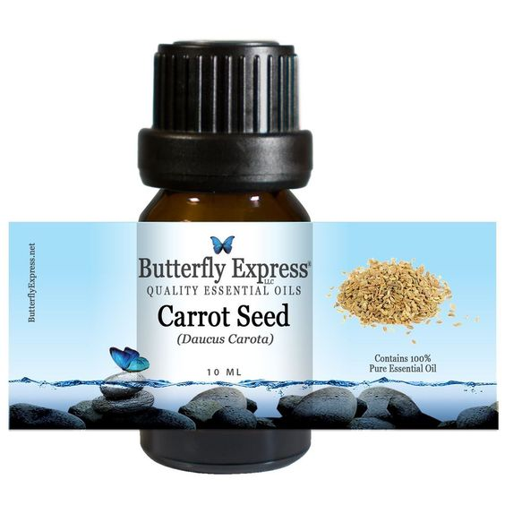 Carrot Seed Essential Oil strengthens eyesight and help with anemia. It is particularly useful in bowel inflammations.   100 Pure Butterfly Express Quality Essential Oils
