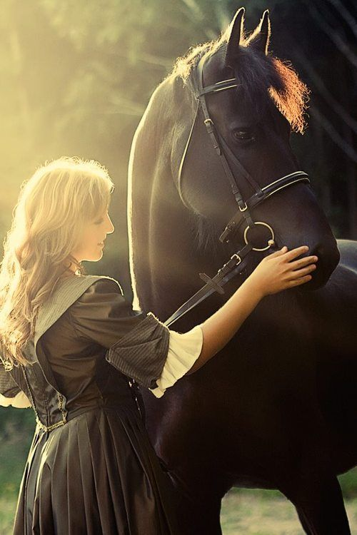 #horseriding #horserider #equine Woman and horse in the sunlight. #Horse #love #princess