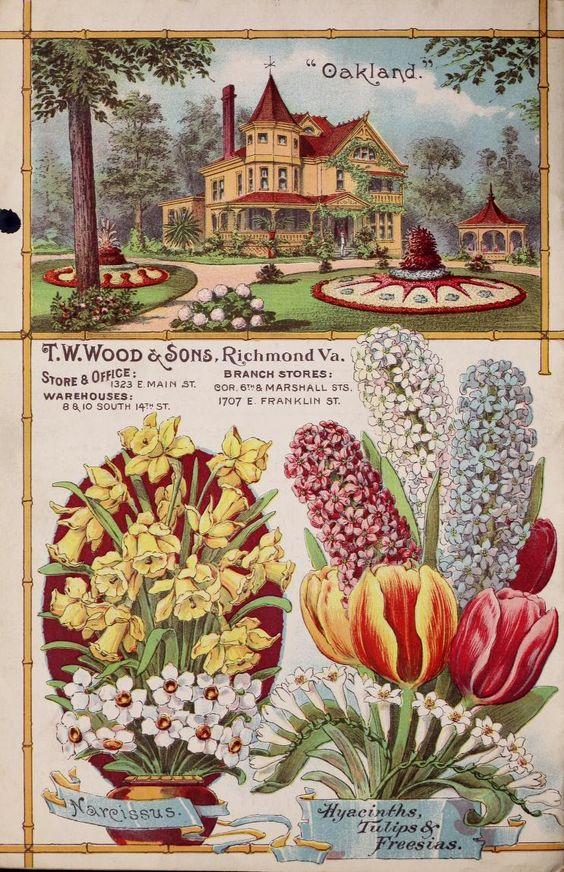 TW Wood & Sons - Wood's garden & farm guide : high grade seeds for 1898:
