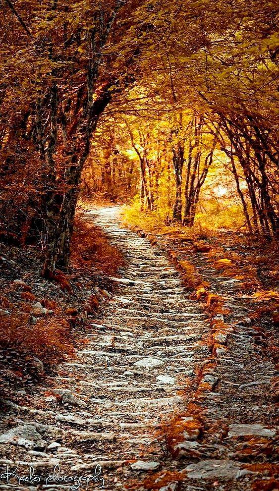 Autumn Path (Greece) by Kate Eleanor Rassia on 500px