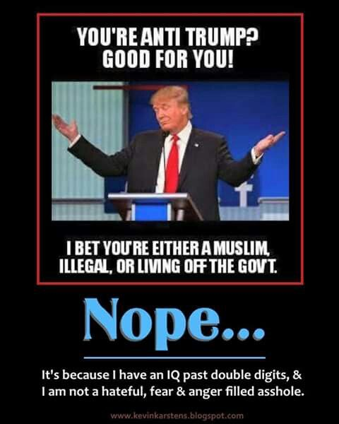 IQ over double digits & am not fueled by hate, anger & greed. Anti-Trump = ME #DumpTrump #VoteTheGOPOut!