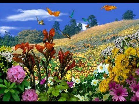 Resultat De Recherche D Images Pour صورة عن فصل الربيع Screen Savers Nature Butterfly Garden