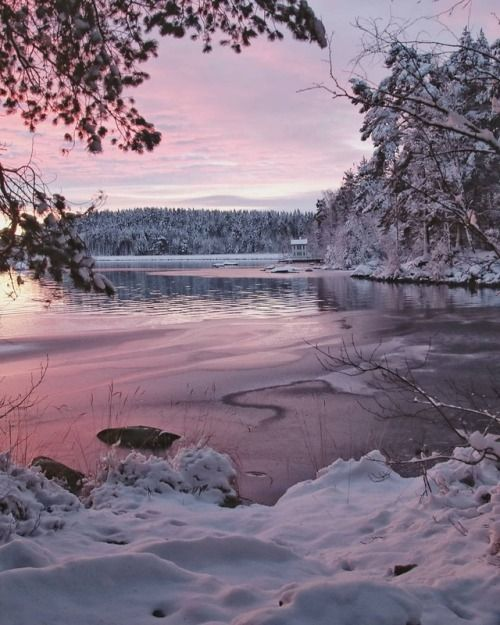 Quiet Nymph Photography By Carina Eklund Falun Sweden Sweden Travel Scenery The Great Outdoors