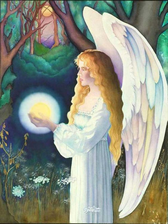 Guidance From The Angels ~ No Expectations
