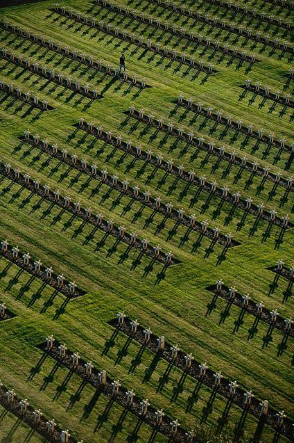 YannArthusBertrand- Cimetière militaire national de Notre-Dame-de-Lorette près d'Ablain-Saint-Nazaire, Pas-de-Calais, France (50°23'N - 2°42'E).