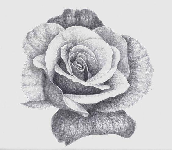 Flower Drawing App