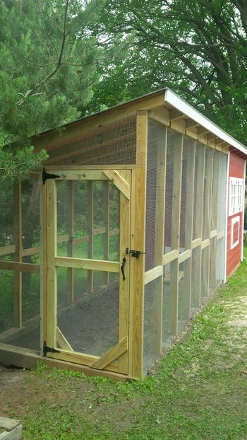 Easy backyard chicken coop plans our kids dogs and kid for Large chicken coop ideas